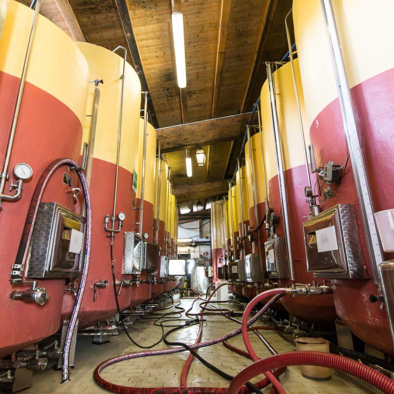 Un momento della produzione in Ariola Vigne e Vini S.r.l.